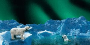 Enfants et changement climatique