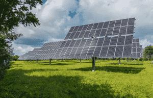 énergie renouvelable & biodiversité : panneaux photovoltaïques