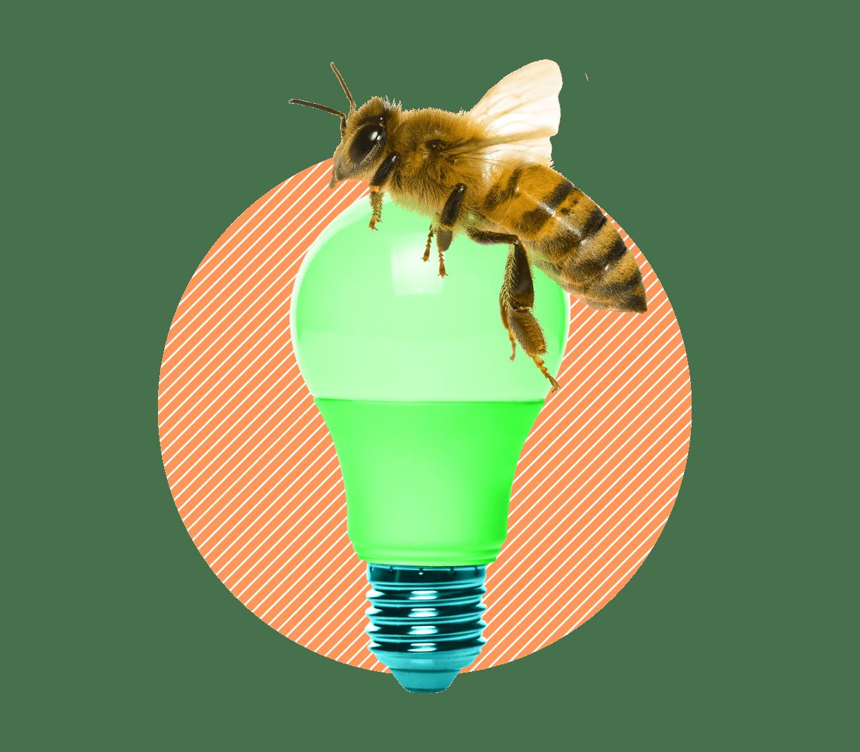 électricité toujours plus verte et responsable