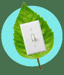 professionnels énergie verte