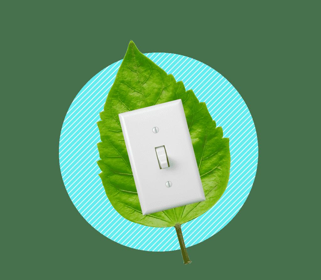 offre électricité verte