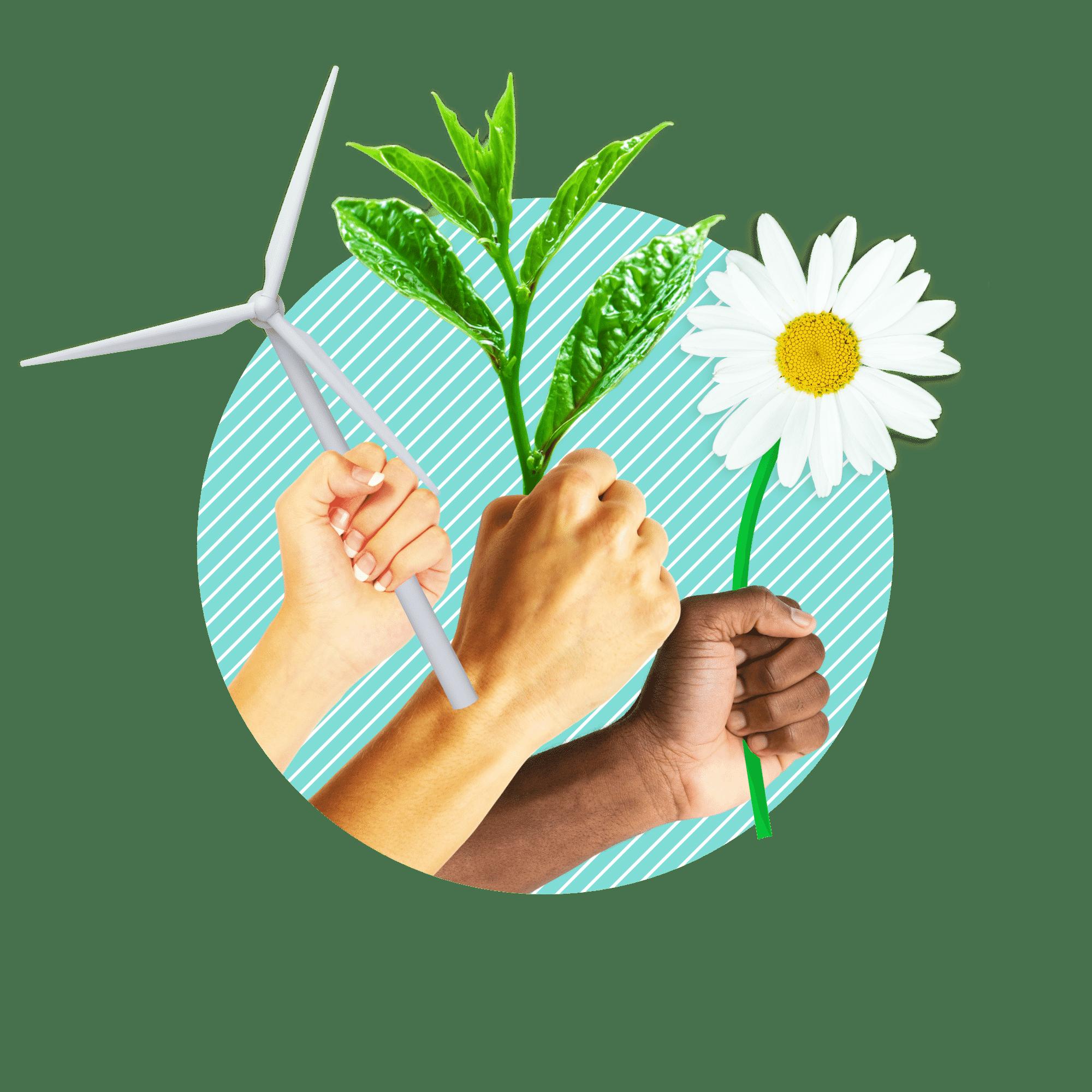 label électricité vert Vertvolt